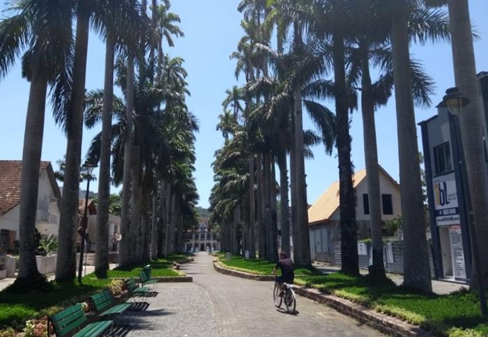 melhores-pontos-turisticos-de-Joinville-rua-das-palmeiras